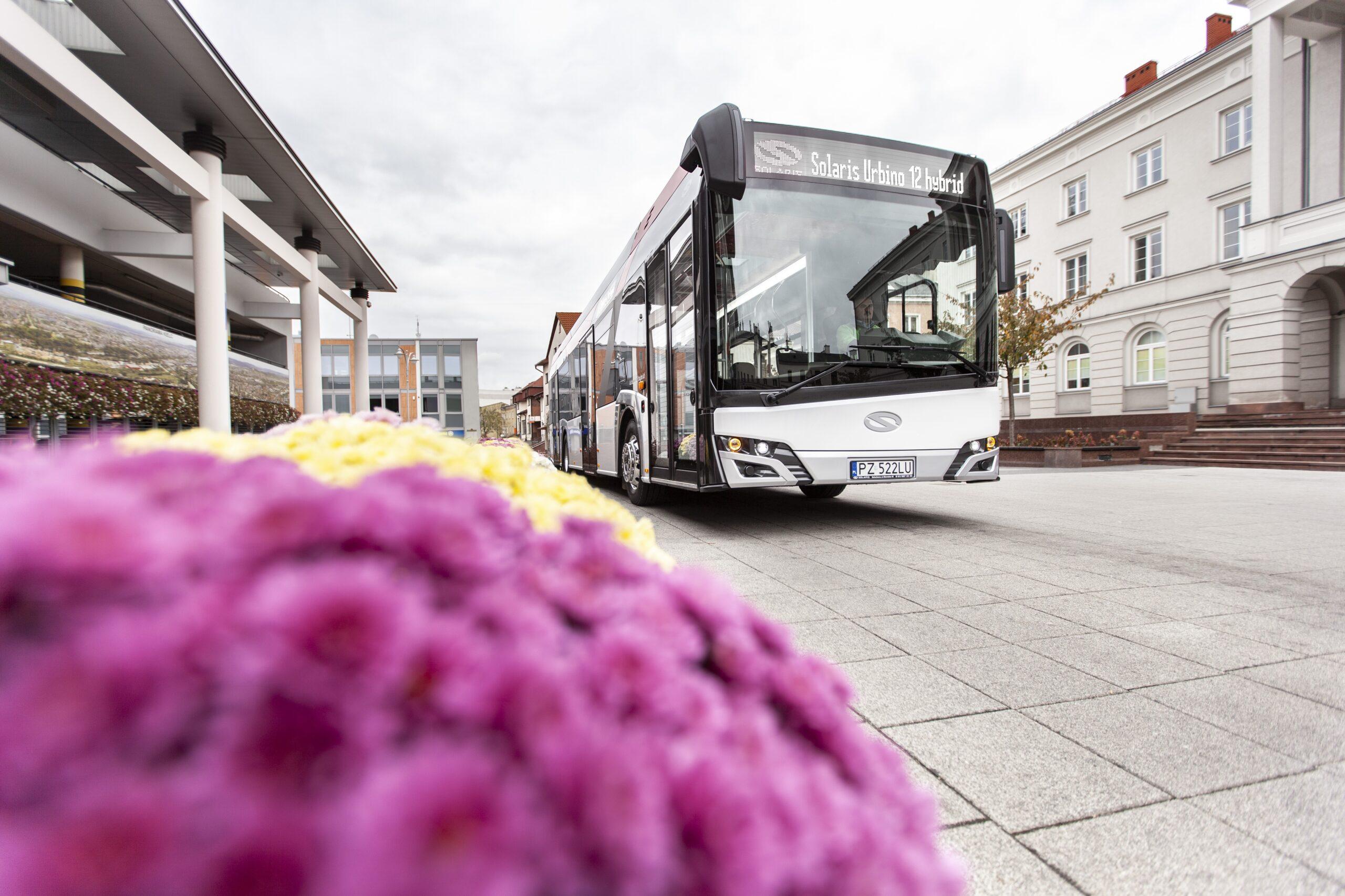 solaris romanian city hybrid buses reghin