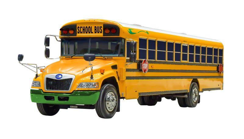 blue bird school buses North America