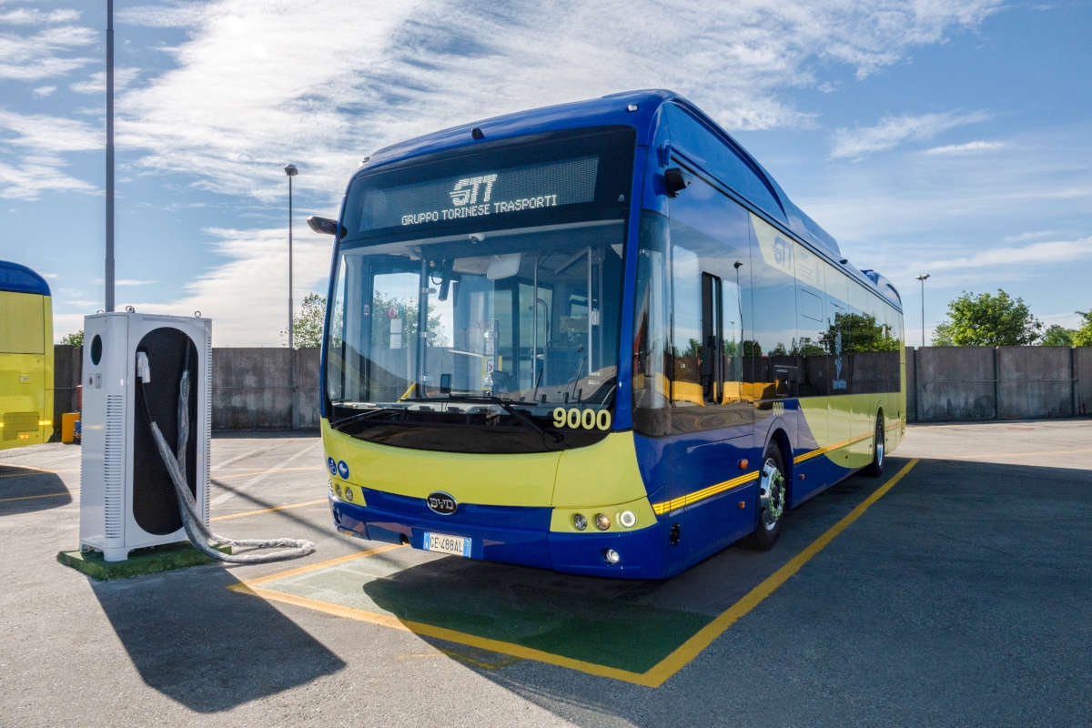 byd electric bus turin