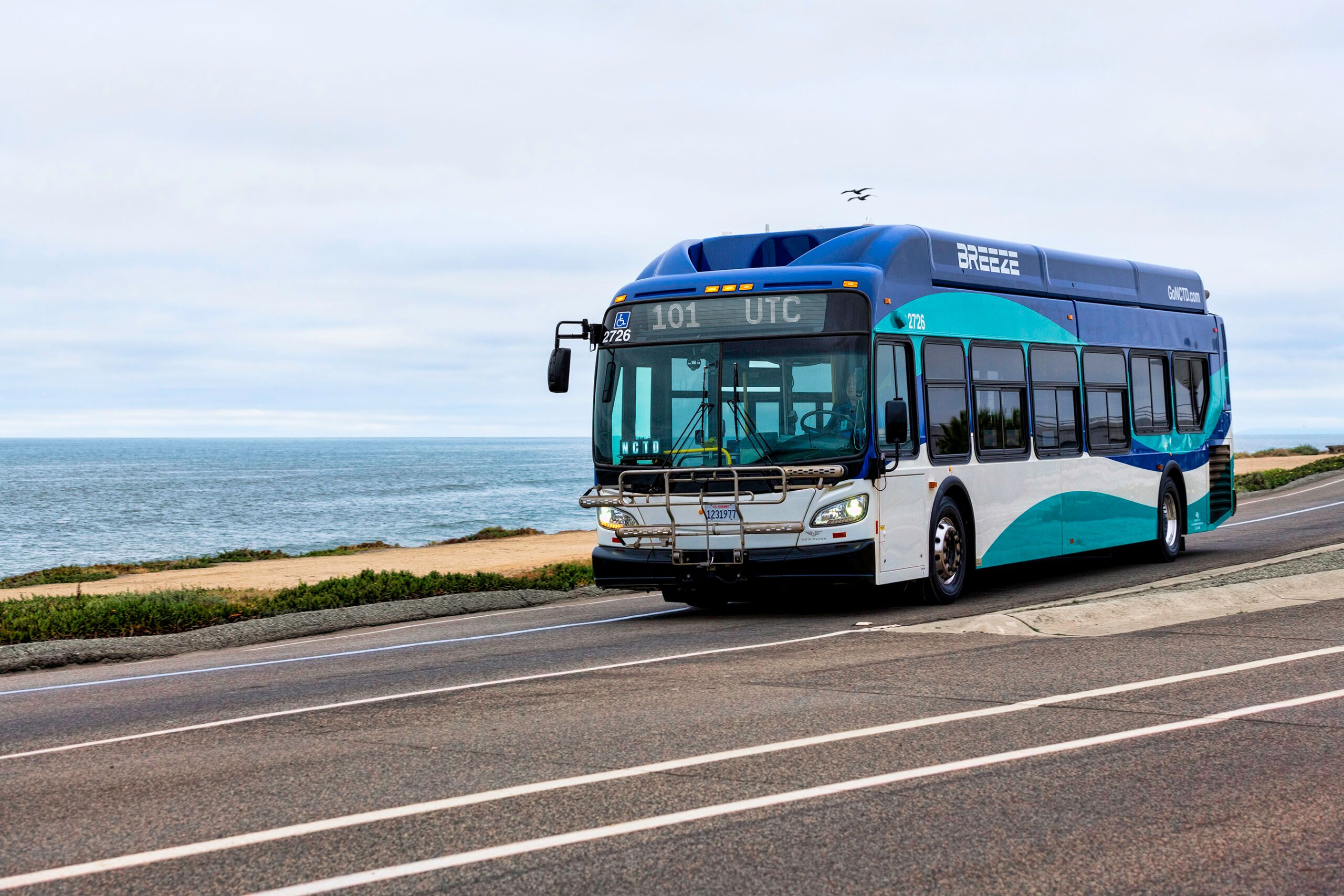 NCTD bus grant